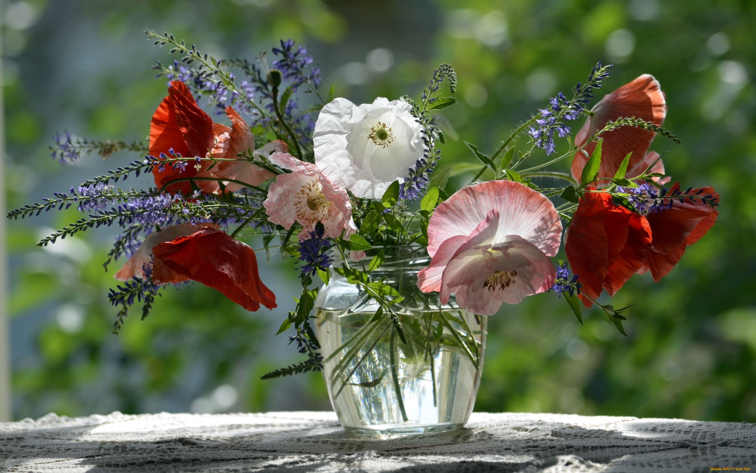 фото чудесного цветка весь тур база